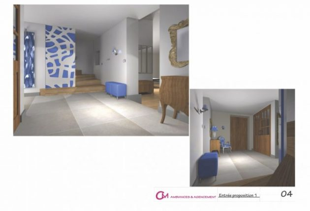 3D pour ambiance Hall Entree 4
